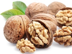 nuts1_600x450